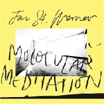 jan st. werner (mouse on mars) - molocular meditation