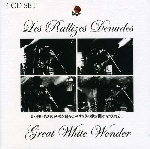 les rallizes denudés - great white wonder