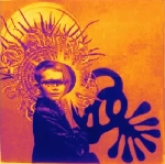 the brian jonestown massacre - fist full of bees (rsd 2013 release)
