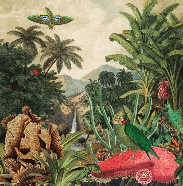 Lagoss - Imaginary Island Music vol.1: Canary Islands