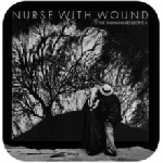 nurse with wound - the swinging reflective II