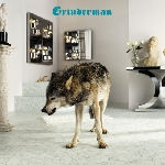 grinderman - grinderman 2 (deluxe ltd edition)