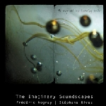 the imaginary soundscapes (frédéric nogray - stéphane rives) - a way out by knowing smile