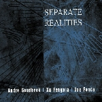 andré goudbeek - xu fengxia - joe fonda - separate realities