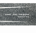 daniel levin - rob brown - divergent paths