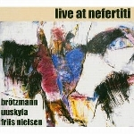 peter brötzmann  - live at nefertiti