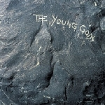 the young gods - the young gods + live at fri-son 1987 (2 cd set deluxe edition)