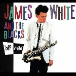 james white & the blacks (james chance) - off white