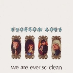 blossom toes - we are ever so clean (180 gr.)