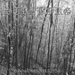 striborg - ghostwoodlands