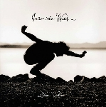 eddie vedder - into the wild (180 gr.)