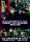 the peter brotzmann  - concert for fukushima wels 2011